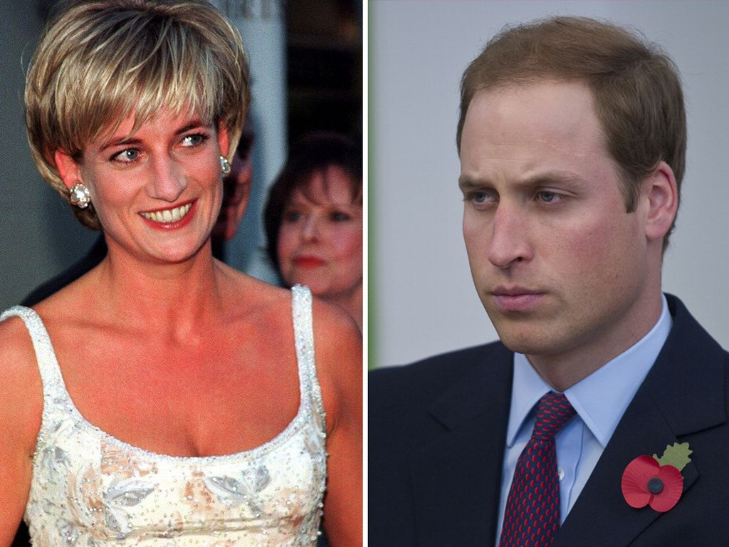 Prinzessin Diana und Prinz William
