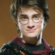 Als Harry Potter wurde er bekannt