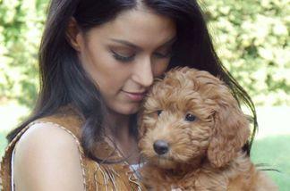 Rebecca Mir zeigt sich jetzt mit ihrem Hund Macchia