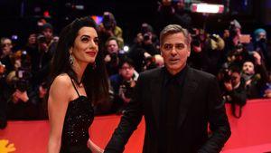 Amal und George Clooney halten auf der Berlinale Händchen