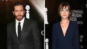 Jake Gyllenhaal und Dakota Johnson
