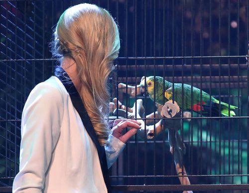 Janina Skurt und Papagei Jacko sind gestern  ins Finale vom Supertalent gewählt worden