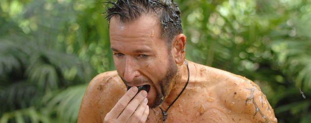 Dschungelcamp 2014: Michael Wendler isst ein Ekel-Ei