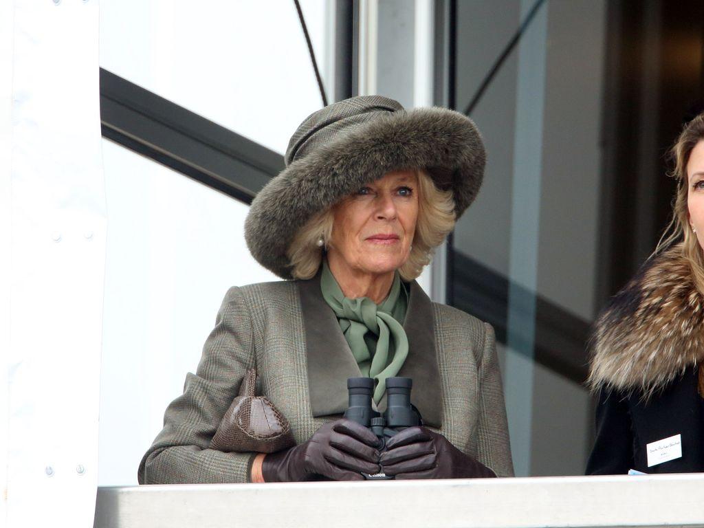 Camilla Parker Bowles beim Pferderennen in Cheltenham 2015