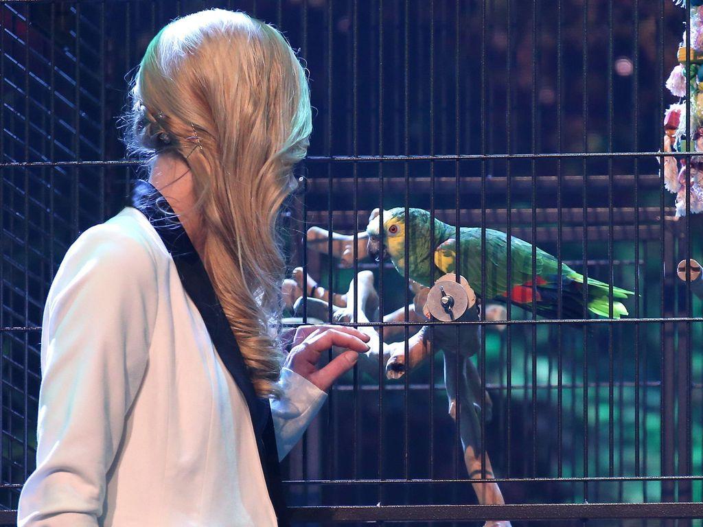 Janina Skurt beim Supertalent