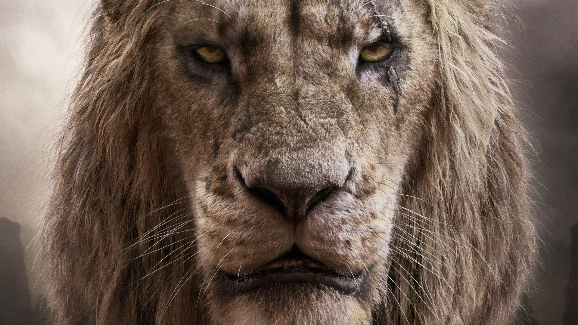 böser löwe