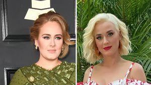Promi-Gegend: Adele, Katy Perry und Co. sind Nachbarinnen!
