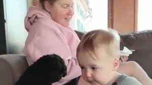 Dauer-Hunger: Amy Schumers Söhnchen und Hund randalieren!