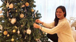 Ana Ivanovic beim Weihnachtsbaumschmücken