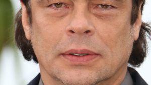 Starke Frise! Benicio Del Toro steht zum Vokuhila
