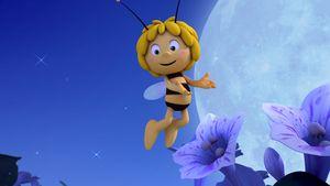 Huch! Was ist bloß mit Biene Maja passiert?