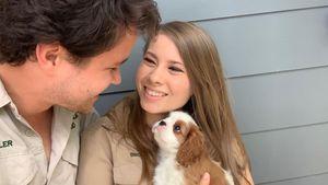 Chandler und Bindi Irwin verzaubern Fans mit Welpennachwuchs