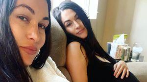 Baby kam schneller: Nikki Bella stichelt gegen Zwilling Brie