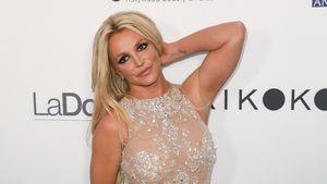 """Stinkefuß-Alarm! Britney Spears' Geruch ist überaus """"toxic"""""""