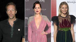 Dakota Johnson: Bald nimmt Chris' Ex sie unter die Lupe!