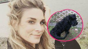 Hund war schuld! So kam es zu Claudelle Deckerts Verletzung