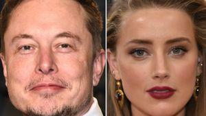Liebes-Comeback? Elon Musk macht Amber Heard Hoffnung!