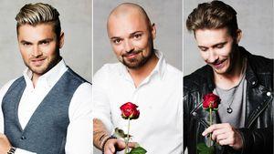 """""""Bachelorette""""-Kandidaten Johannes, Niklas und David"""