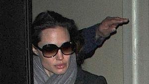 Video: Angelina Jolie gedenkt ihrer Mutter