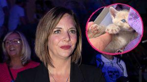 Danni Büchner traurig: Ist ihrem Kätzchen etwas passiert?
