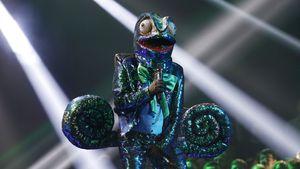 """Wie erwartet? Dieser Promi ist """"Masked Singer""""-Chamäleon!"""