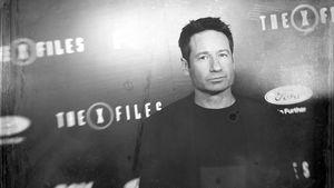 """David Duchovny bei einer """"Akte X""""-Premiere 2016"""