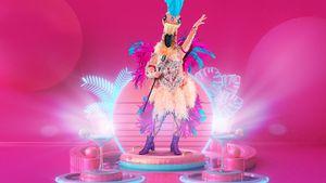 "Geschlechter-Verwirrung um den ""The Masked Singer""-Flamingo"