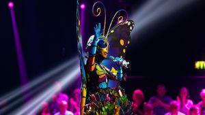 """""""The Masked Singer"""": Dieser Star ist der Schmetterling!"""