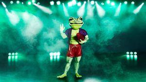 """""""The Masked Singer"""": Es gibt neue Indizien für den Frosch"""