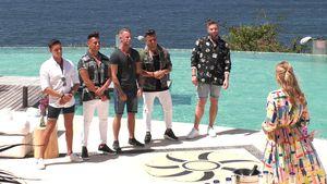 "Mit ""Temptation Island""-Star: Das sind ""Paradise Hotel""-Boys"