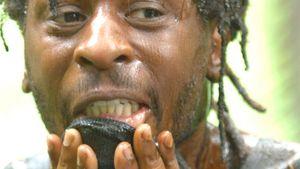 Dschungel-Nörgler Mola Adebisi hat Grund zu feiern