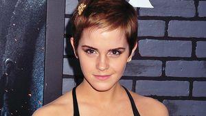 So soll Emma Watsons Traum-Mann sein