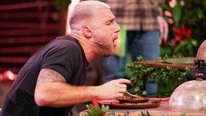 Live-Essensprüfung in Dschungelshow zu krass? Netz kotzt mit