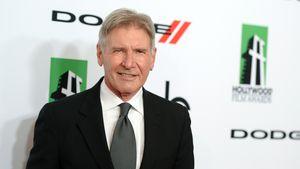 Harrison Fords Horror-Unfall: Jetzt spricht Augenzeuge