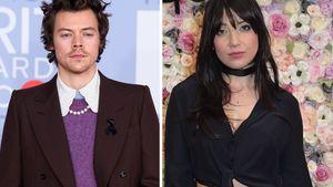 Nach sieben Jahren: Harry Styles will Daisy zurückerobern