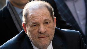 Erfolg vor Gericht: 17 Millionen Dollar für Weinstein-Opfer