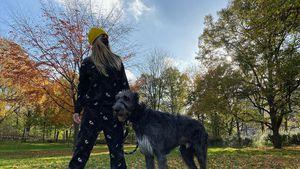 Im Jogger: So lässig geht Heidi Klum mit ihrem Hund Gassi!