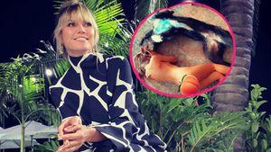 Mit Hund Anton: Heidi Klum wälzt sich nackt auf dem Fußboden