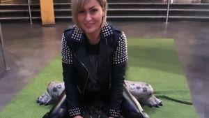 Tierische Aktion: Sitzt Jasmin Herren auf einem Alligator?
