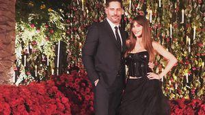 2 Jahre verheiratet: Sofia Vergara feiert live bei Ellen!