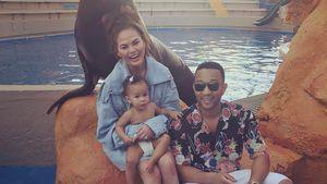 John Legend, Chrissy Teigen und Luna Simone im Aquarium