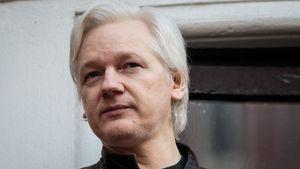 """""""Du bist tot"""": Julian Assange hört im Gefängnis Stimmen"""
