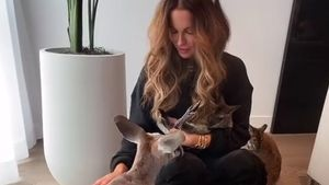 Wegen Känguru-Besuchs: Kate Beckinsale erntet Kritik im Netz