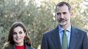 Nach Letizia-Zoff: Adelsexperte rät Felipe zur Scheidung!