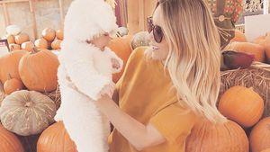 Süßes Lämmchen: Lauren Conrad total verzückt von ihrem Baby!