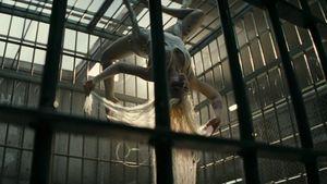 Die Schurken sind los: Endlich der 1. Suicide Squad-Trailer!
