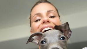 Süß! Michelle Hunziker hat einen neuen Familienhund