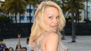 Busen-Stop bei Pamela Anderson!