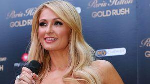 Nach 12 Jahren! Paris Hilton will 2. Album veröffentlichen