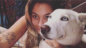 Paris Jackson: Witzige Liebeserklärung an ihren süßen Hund